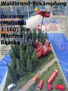 02.08 MVG-Museum 2015 Waldbrand