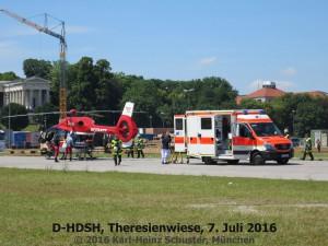 39-d-hdsh-39